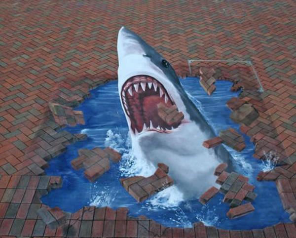 29-Edgar-Mueller-Shark
